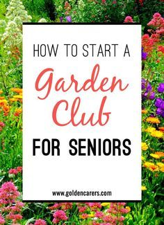 For Seniors Living In Nursing Homes The Benefits Of Garden Related Activities Are Abounding