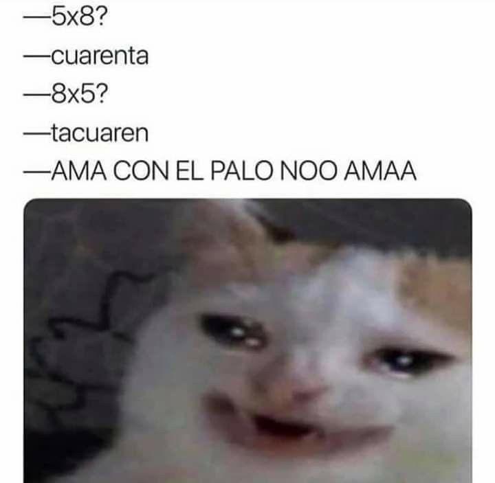 Pin De Dan En Memes En Espanol Memes Divertidos Memes Buenisimos Imagenes De Risa Memes