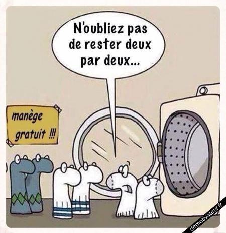 image drole - Manège gratuit