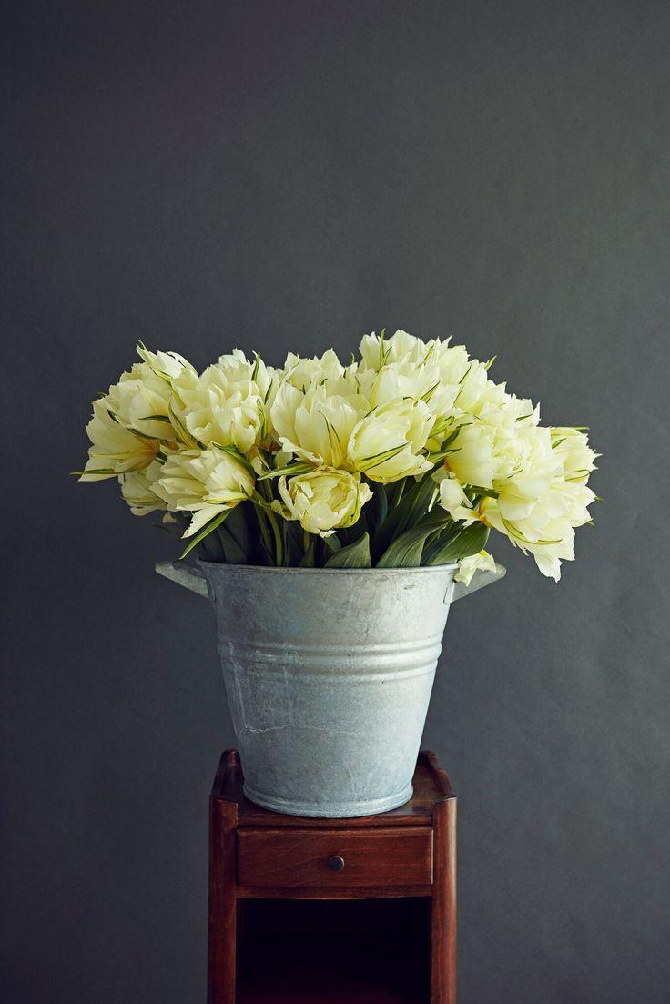 Virgil Flowers Series Flower Gathering Prey Our Beautiful Tulips!