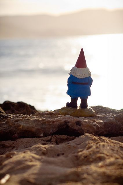 Sometimes you just have to take the gnome less traveled :) travel, nature, gnome, lawngnome, ocean, beach, photography