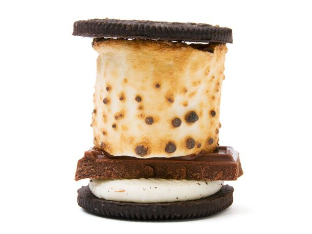 s'moreos: Outdoor Ideas, S Moreo, Oreo Smore, Sweet Treats, This Summer, Chocolates Sweet, Smoreo Cakes, Smoreo Lindy Hamm, Summer Camps