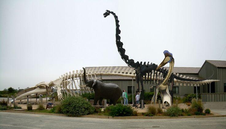 blue whale vs sauropod vs elephant vs quetzalcoatlus