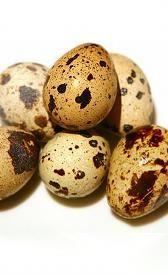 Propiedades nutricionales de los huevos de codorniz. Los huevos de codorniz, alimento rico en vitamina B2 y vitamina B5 del grupo de los huevos.