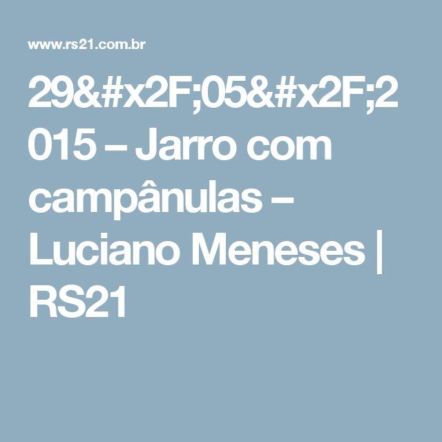 29/05/2015 – Jarro com campânulas – Luciano Meneses   RS21
