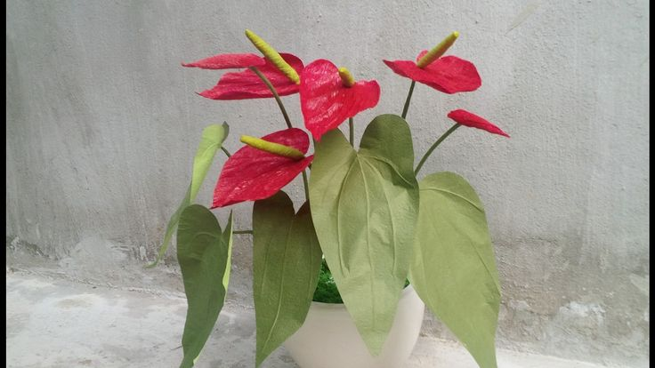 How To Make  Anthurium Paper Flower From Crepe Paper - Craft Tutorial