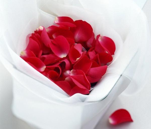 Cómo hacer aceite de rosas. Las rosas son flores románticas, hermosas y seductoras. Pero además de su inconfundible belleza, poseen propiedades muy beneficiosas para la piel, ayudando a rejuvenecerla y combatir la sequedad. Adem...