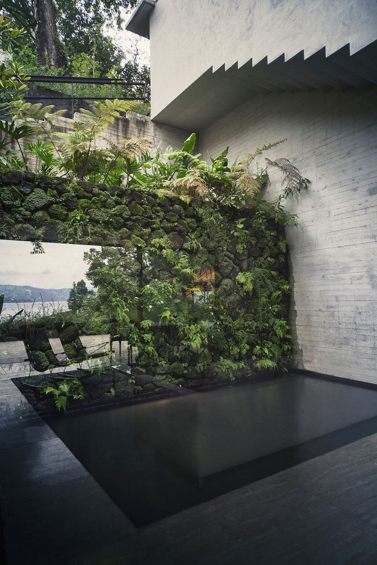 Greenery and landscape A Deeper Sense of Nature: Maza House by CHK Arquitectura