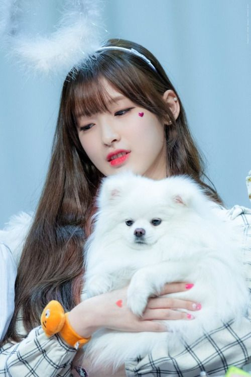 Arin (Oh My Girl) - Busan Fansign Event Pics