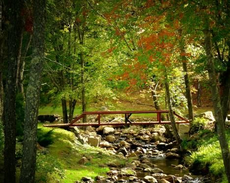 Fall Footbridge--Northwood, NH (Photo by Elaine Franklin)