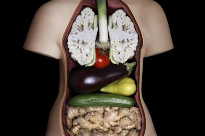 alimenti simili agli organi che curano