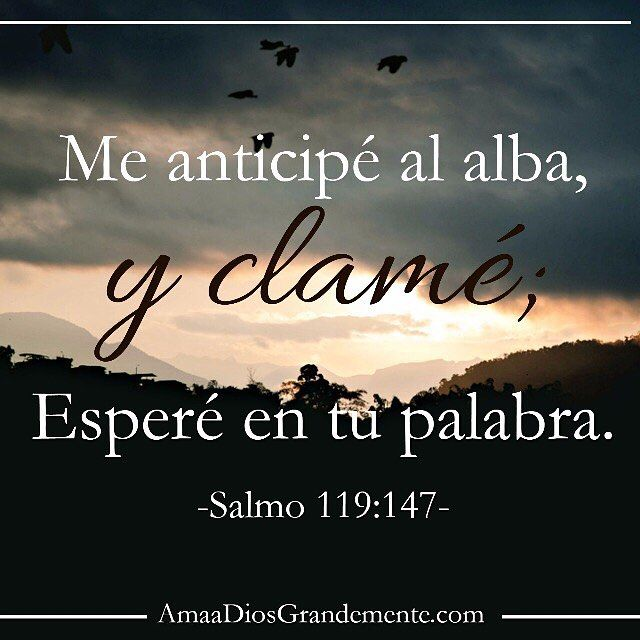 #AmaaDiosGrandemente #Salmo119 Semana 7- Lunes Lectura - Salmo 119:145-148…