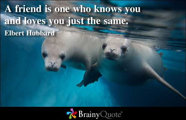 Friendship Quote Brainy : Best brainy quotes ideas on stay strong