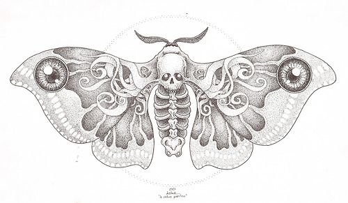 Moth Skull Design #tattoo #traditionaltattoo #skull