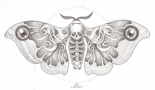 Moth Skull Design #tattoo #traditionaltattoo #skull