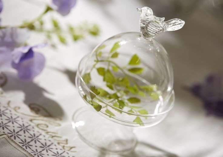 Bel oiseau sur sa #cloche de verre #AMADEUS