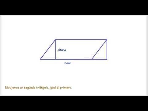 4. Área del paralelogramo