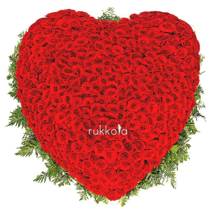 Впечатляющая букет из 501 красной розы в форме сердца в корзине. Первая честная доставка цветов. #rose #501 #heart #moscow