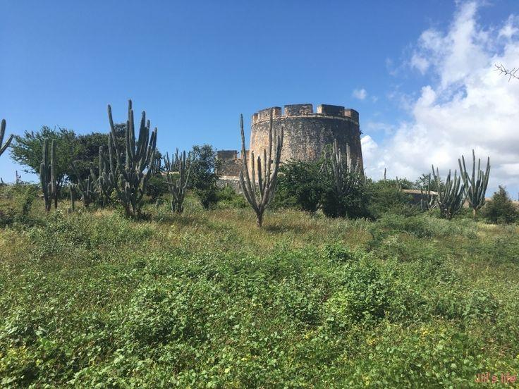 Niet veel mensen weten dat er nabij Jan Thiel een mooi stukje geschiedenis staat van Curacao. Het is enkel de Caracasbaai voorbij rijden en je bent er! Ik heb het dan over Fort Beekenburg en het Quarantainegebouw.  Fort Beekenburg Dit fort werd gebouwd in 1703 ter verdediging van het Spaanse Water. Deze plek was … … Lees verder →