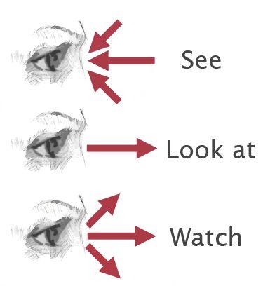 """Diferenças entre """"See"""", """"Look"""" e """"Watch"""" em inglês"""