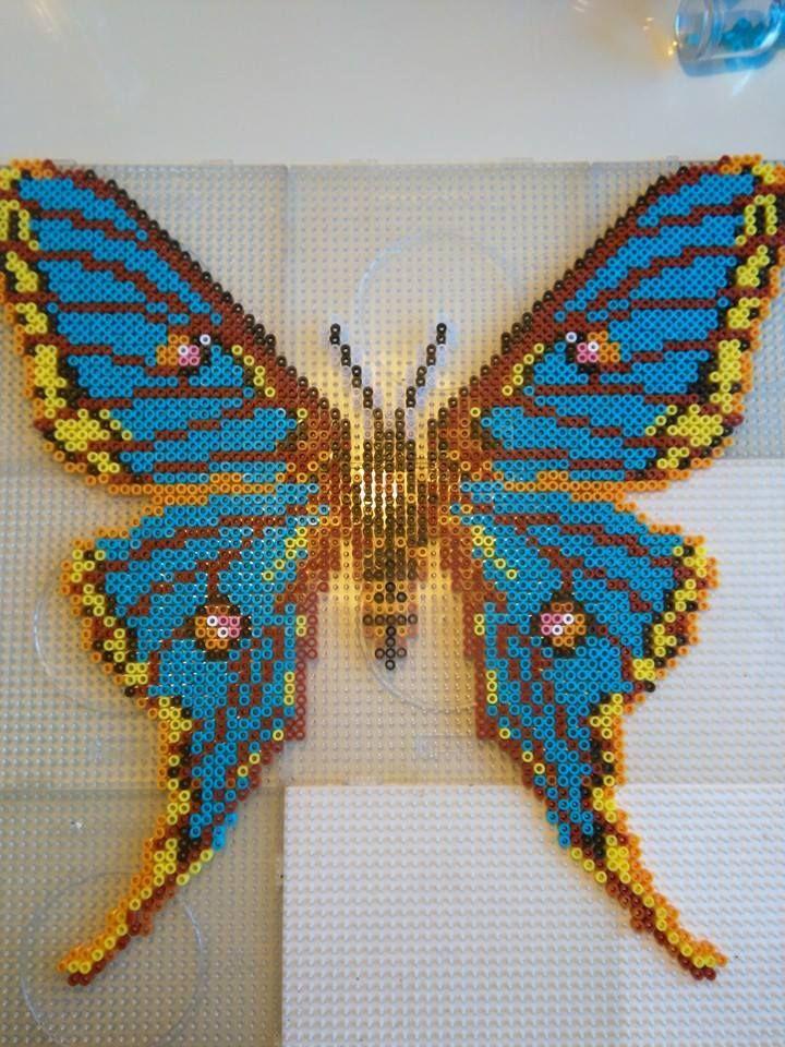 Hama perler bead butterfly | Perler Bead Designs | Perler ...
