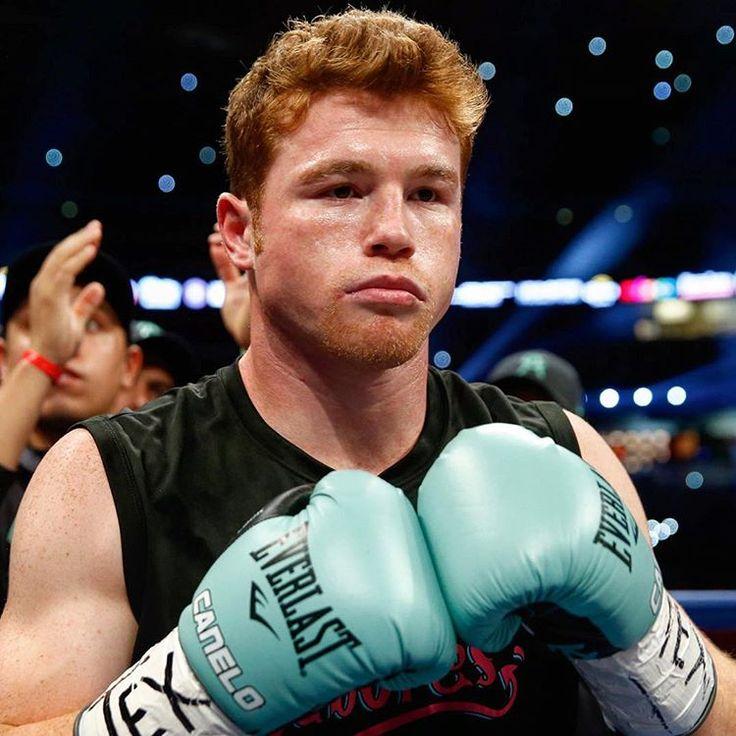 MUST READ The allure of Canelo Alvarez LINK IN BIO http://www.boxingnewsonline.net/must-read-the-allure-of-canelo-alvarez/ #boxing #BoxingNews #Canelo #CaneloChavez