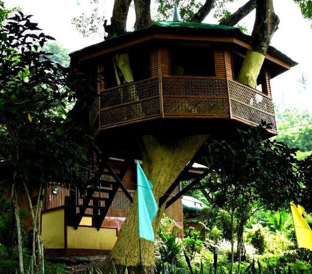 En Modern Ağaç Evler