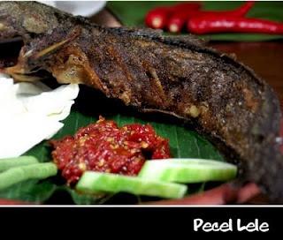 Pecel lele (atau Pecek lele) di Indonesia adalah nama sebuah makanan yang terbuat dari ikan lele. Biasanya yang dimaksud adalah ikan lele yang digoreng kering dengan minyak dan lalu disajikan dengan sambal lalapan.