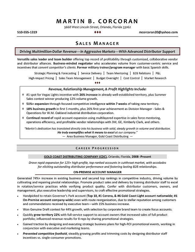 8 best CVu0027s images on Pinterest Resume templates, Sample resume - vp of sales resume