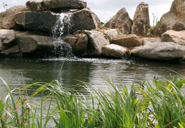 Swimming POND...I want one!  Only $50,000-120,000.