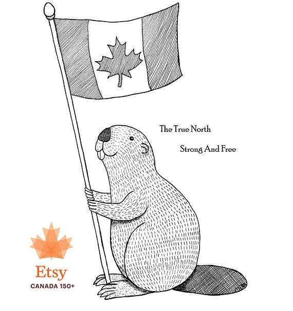 Canadian Art Print Beaver Canadian Maple Leaf Flag Funny