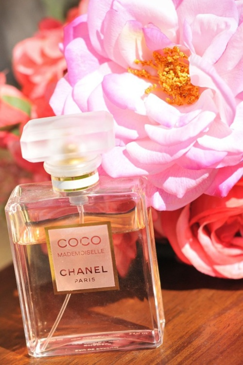 Coco Mademoiselle Chanel Beautiful Perfume Pinterest