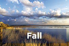 Fall in Greece.