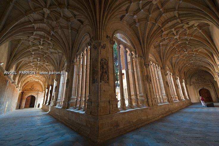 Claustro de la Catedral de Salamanca. Spain