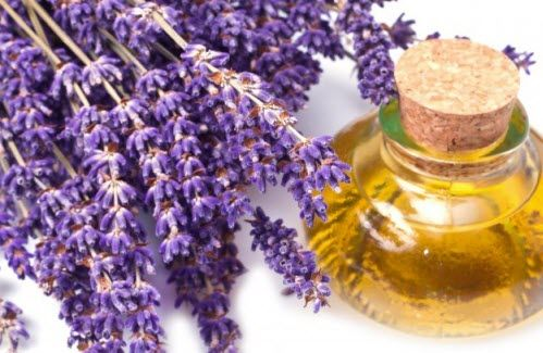 #Fragrant essential oils are not only used in relaxing aromatherapy treatments, but also in treating various other health issues