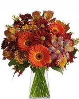 oranžová kytice - rozvoz květin