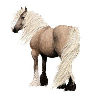Candy, Pferd Isländer Hellgrau #3818307 - Howrse