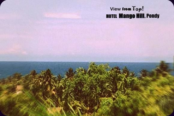 Mango Hill Roof top view