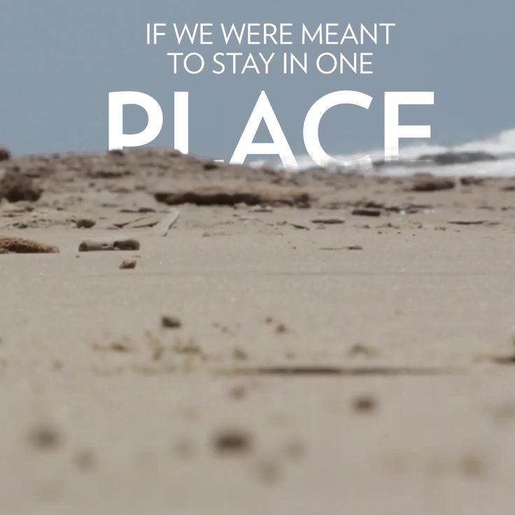 Quote For Travel: 25+ Best Travel Quotes On Pinterest