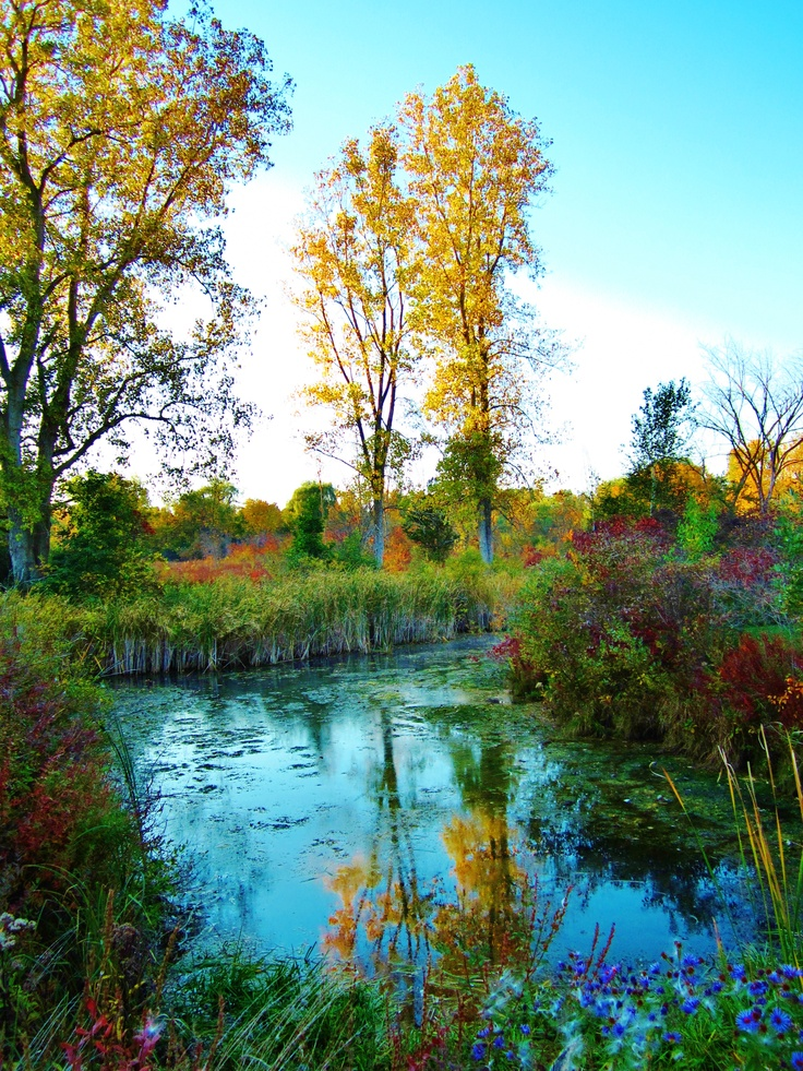 7 best indian trails firekeepers casino images on pinterest travel battle creek and places for Botanical gardens ann arbor mi