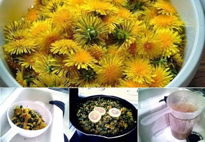24 Little-Known Uses for Dandelions From Baking and Pain Relief to Quickly Removing Warts | HEALTH & WELLNESS