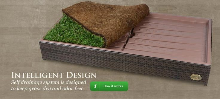 The #1 Selling Grass Litter Box for Dogs - Potty Training Made Easy