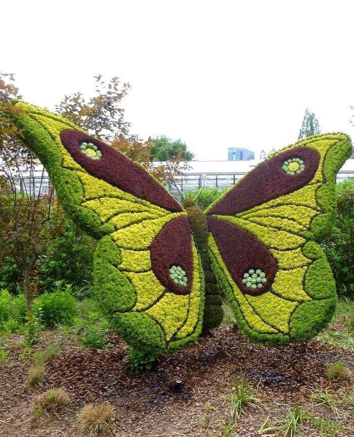 Atlanta Botanical Garden Skyline Gardens: 17 Best Images About JARDIN