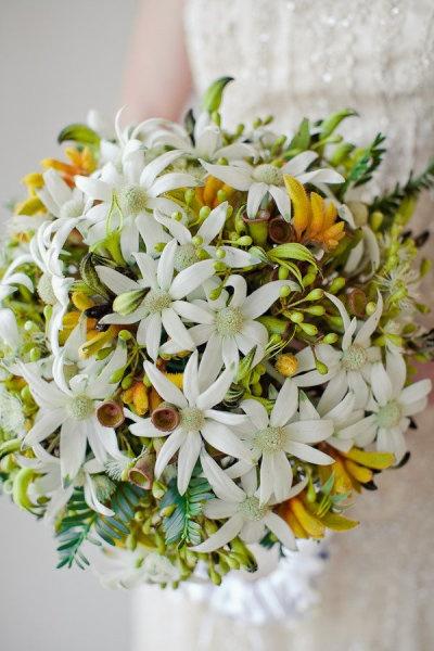 Australian wildflowers: Flannel flowers, kangaroo paw, eucalyptus blossoms + gum nuts