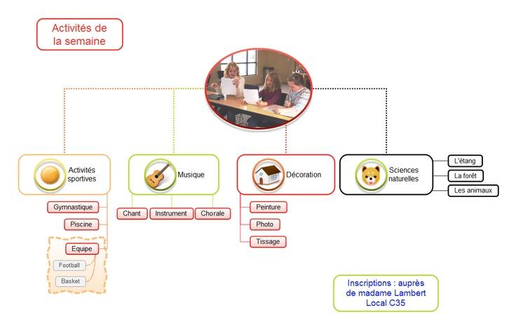 Un organigramme réalisé avec MindMaple, un logiciel de mindmapping très complet et pourtant très bon marché.