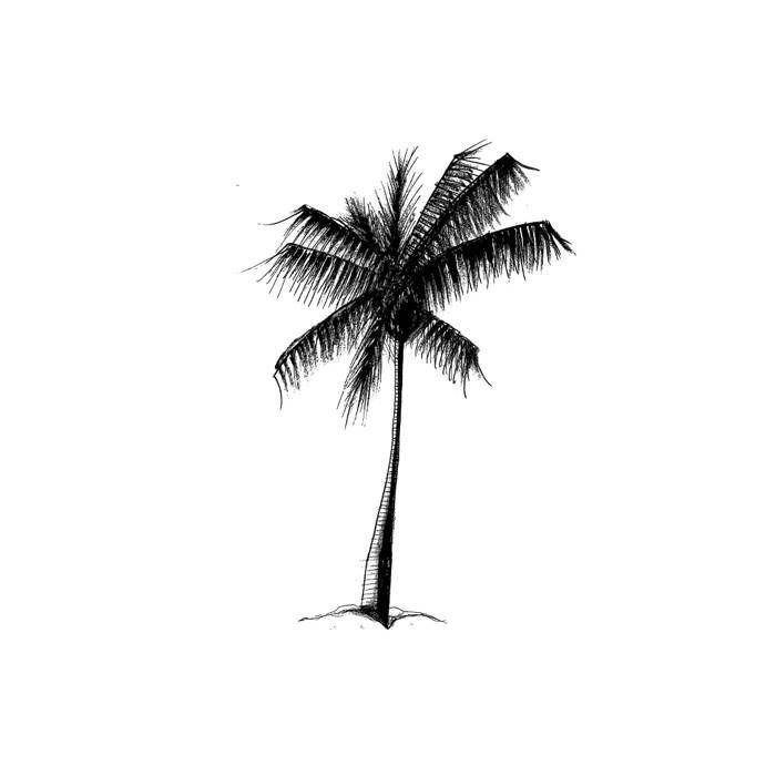 Palm tree Beach Life / Travel / Well Being and Lifestyle on @strangeandnoisy www.strangeandnoisy.com