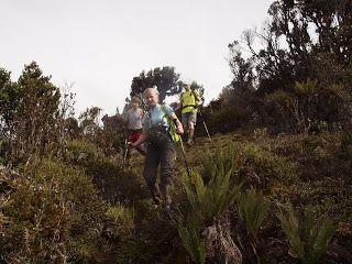 Tropical Wilderness: Menuju Nasidome
