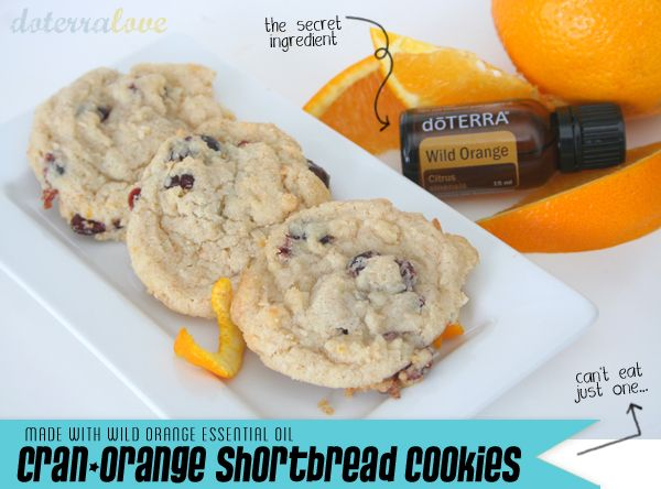 77 best essential oils cooking images on pinterest cooking with cran orange cookies w wild orange essential oils forumfinder Images