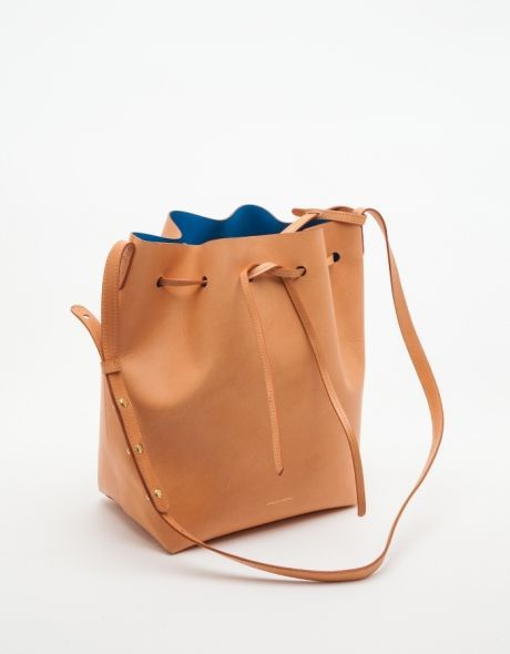 The Mansur Gavriel bucket bag that's on everyone's mind