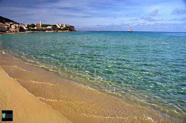 19 Best Images About Calvi Ile Rousse La Balagne On